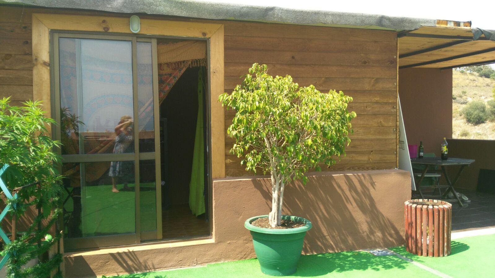 Casa de madera en el solarium